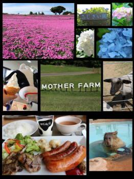 motherfarm.jpg
